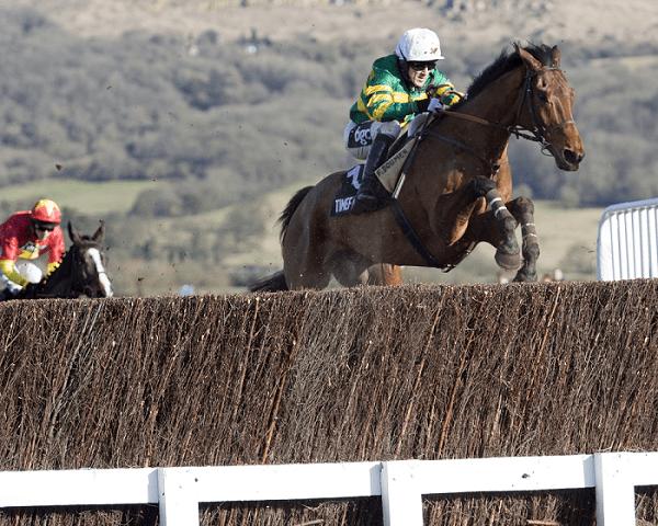 Tony McCoy Horse Racing