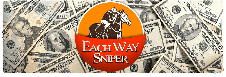 each way sniper image