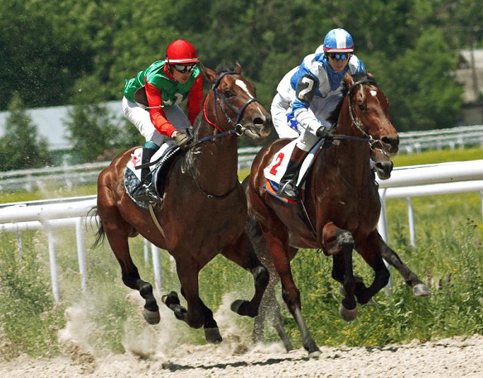 2 Horses Racing