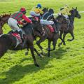 race horses sprinting around corner