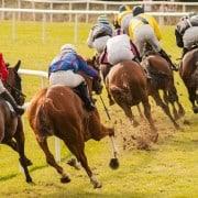 Big race bookie busters