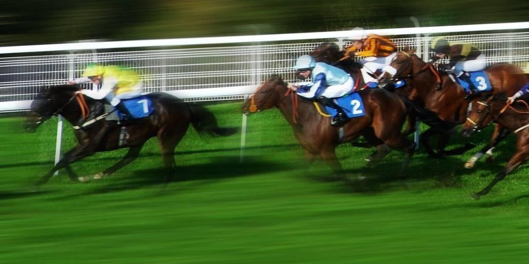 betting gods horse racing guru definition