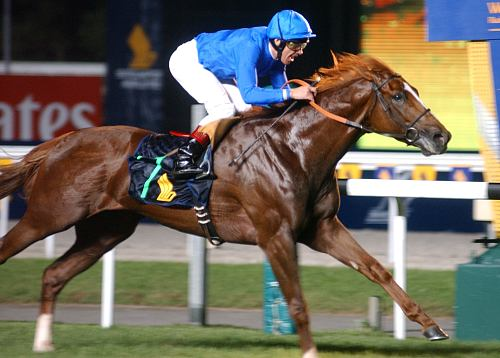 Frankie Dettori - Horse Racer