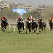 Horse race India