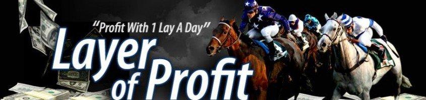 layer of profit