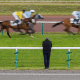 Robert Fraser's Racing Tips pic