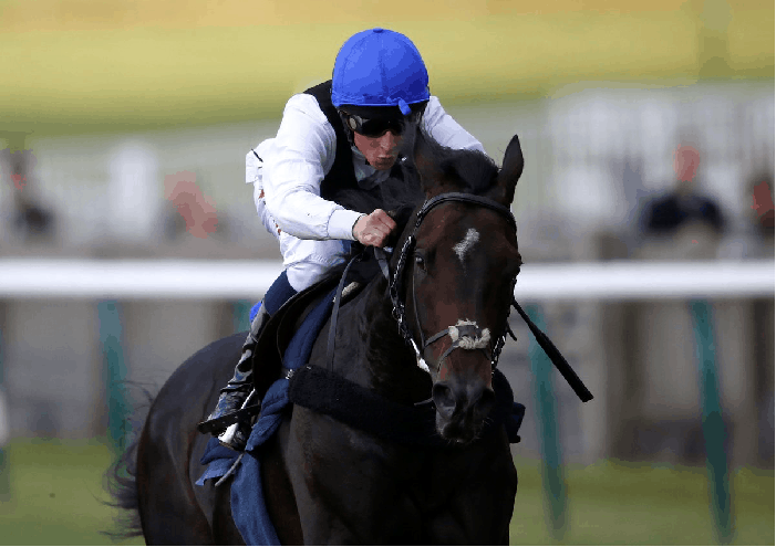 Prince of Wales's Stakes