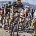 Tour de France pic