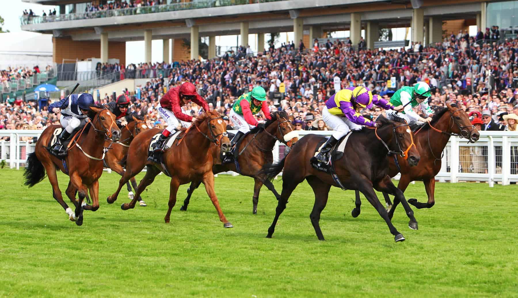 ascot-racing