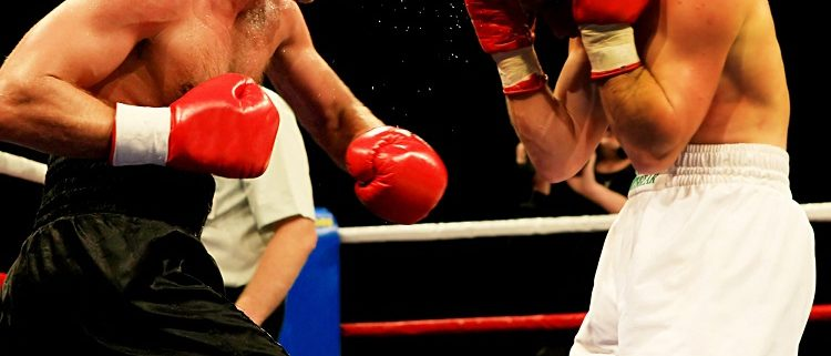 boxing tipster