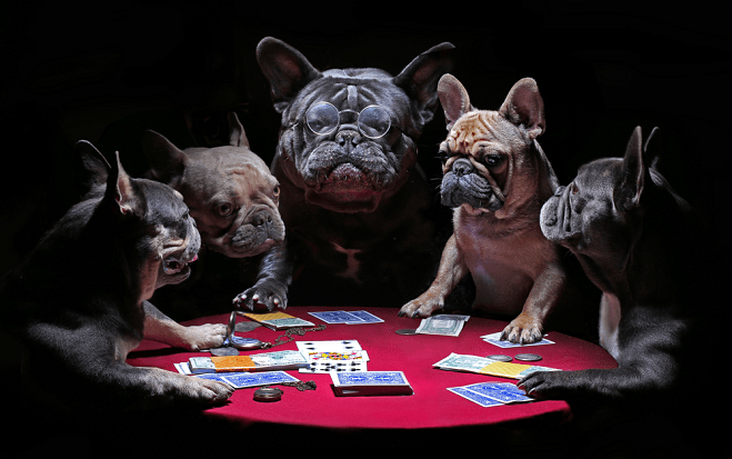 Gambling Jokes - Honest Betting Reviews