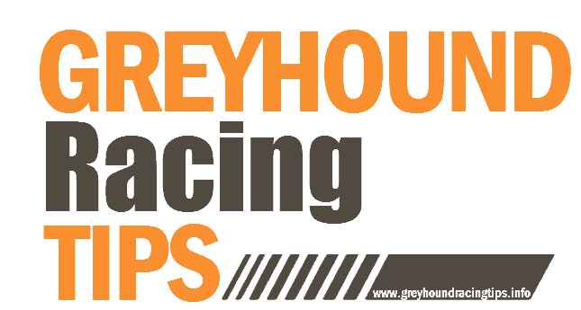 Greyhound Racing Tips