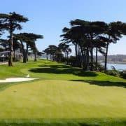 harding park golf club