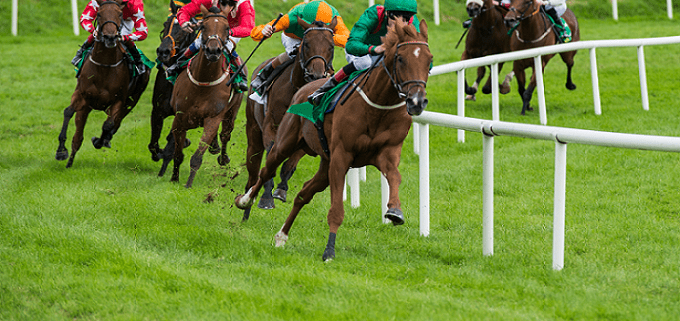 Free Horse Racing Tips - The Best and those to Avoid