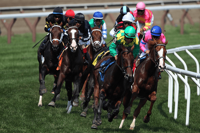 Group of Horse Racers