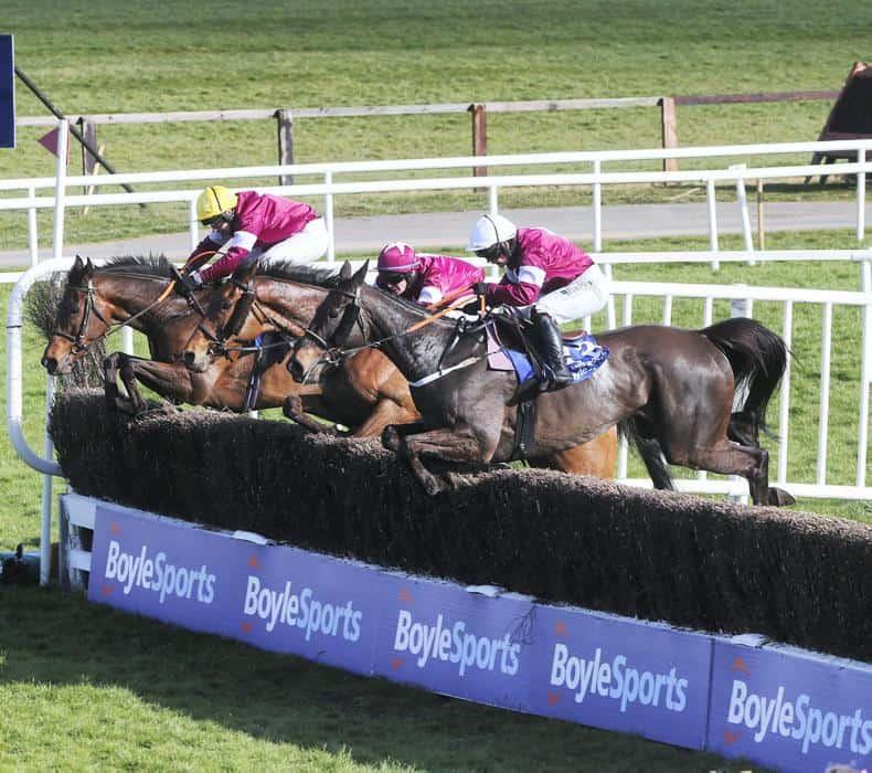 Horse Jumps Racing