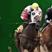 racing odds pic